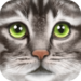 Download Ultimate Cat Simulator